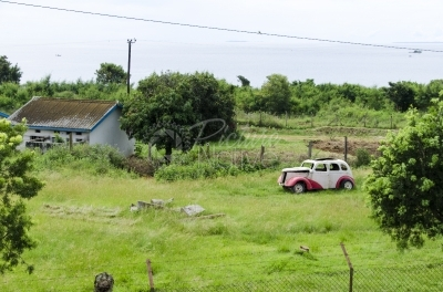 An abandoned old car in the farmyard
