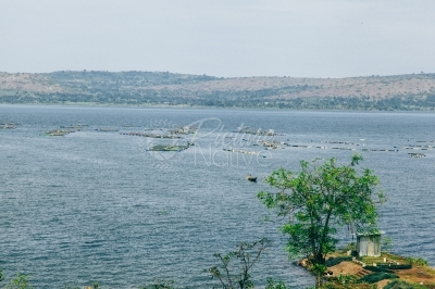 Fish farm in a lake