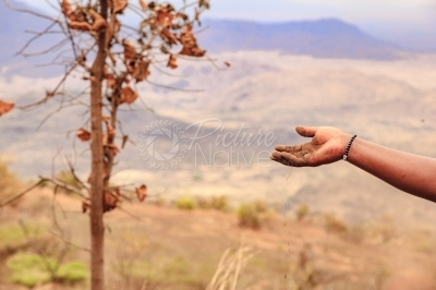 Hand dropping dust against a savanna landscape