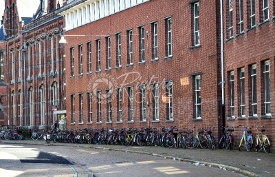 Many parked bicycles in front of a building