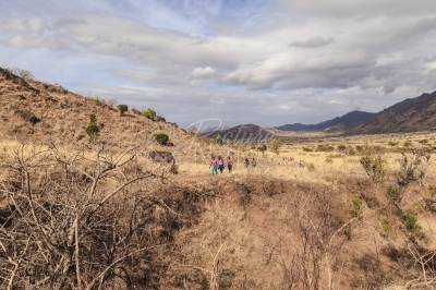 People walking in a rough terrain