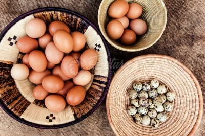 Quail eggs and chicken eggs in a basket