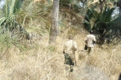 Security personnel escorting a man through a thick bush