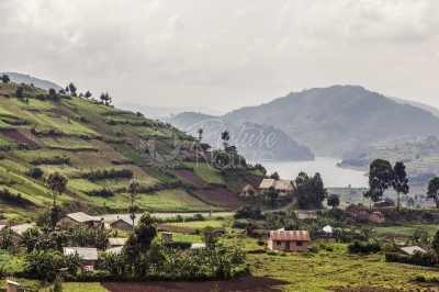Terraced landscape and Lake Bunyonyi in Kigezi, Uganda