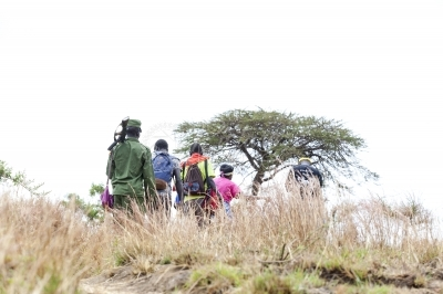 Tourists pass trough a grassland