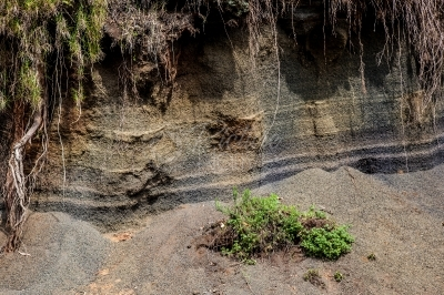 Volcanic soil layer